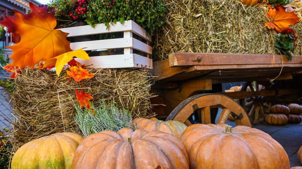 Halloween in Toscana